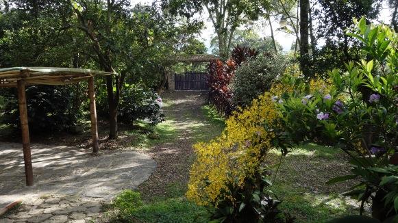 DSC02521-entrada-jardin
